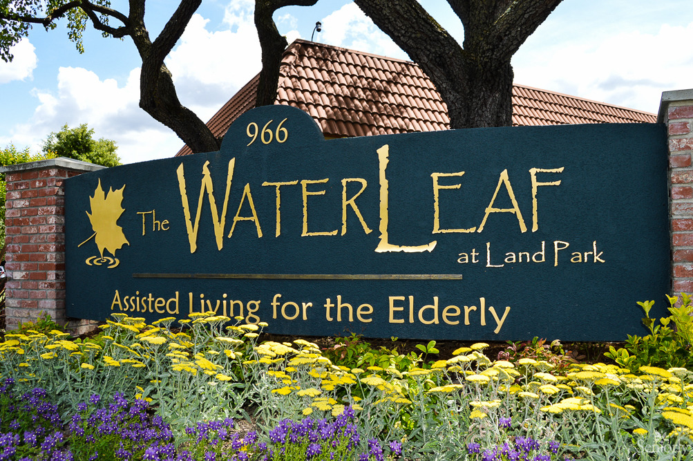 The Water Leaf At Land Park Sacramento CA 22